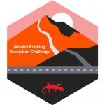 Strava Challenge badge-3d